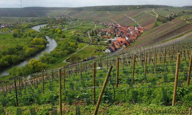 フランケンのビューポイント Vogelsburg